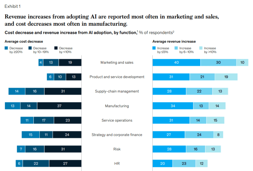 Global AI Survey, McKinsey (2019)